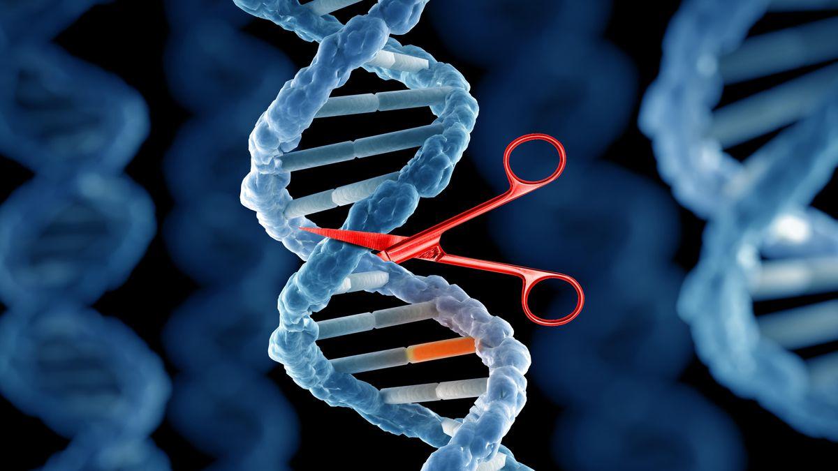 امیدی تازه برای درمان بسیاری از بیماریها با موفقیت جدید ویرایش ژن کریسپر