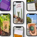 اپل با ویژگی Live Text نوشتههای داخل تصویر را به متن دیجیتالی تبدیل میکند