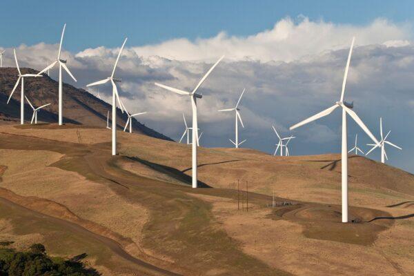 مطالعهای جدید از تولید بیشتر انرژی توسط توربینهای بادی در پشت تپهها خبر میدهد