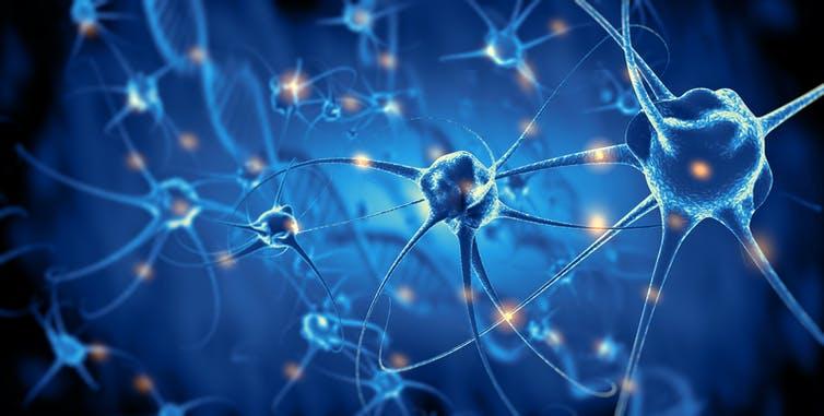 سیگنال مغزی