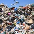 راهکاری متفاوت برای کمک به زمین: تفکیک زبالهها با هوش مصنوعی