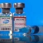 دکتر ساینا دفترچه راهنمای واکسن کرونا در ایران را منتشر کرد