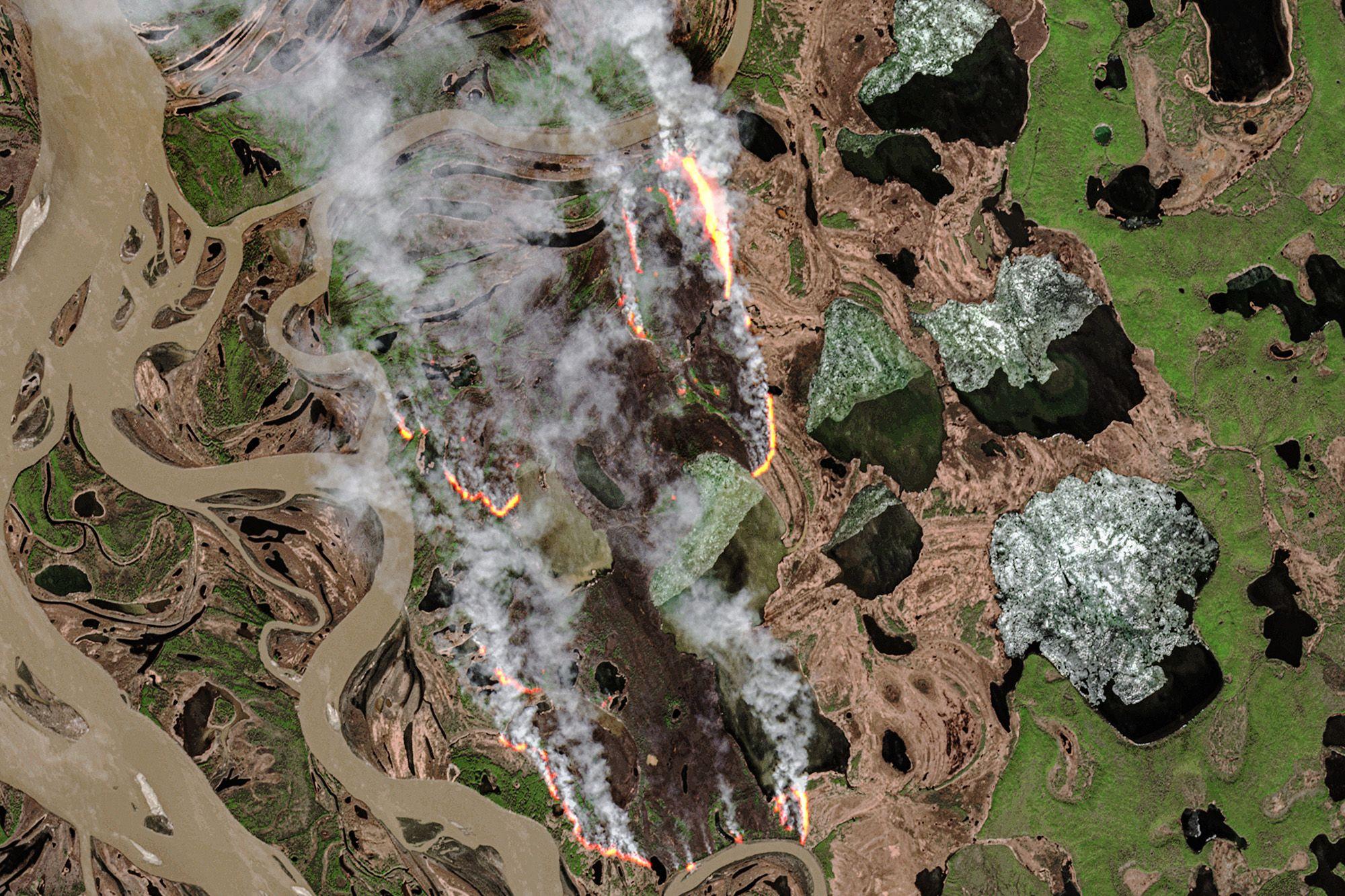پیوند آتشسوزیهای وحشتناک «زامبی» در شمالگان و تغییر اقلیم: همه چیز قربانی آزمندی بشر
