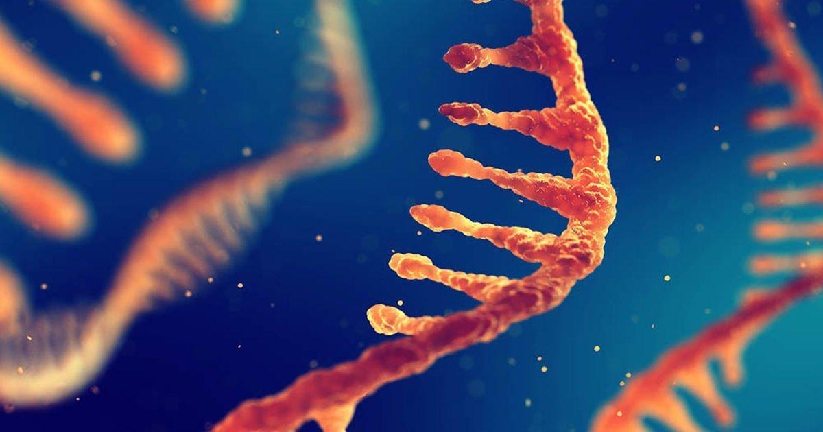 تحقیقی تازه برای اولین بار از قابلیت نوشتن دنبالههای RNA در DNA خبر میدهد