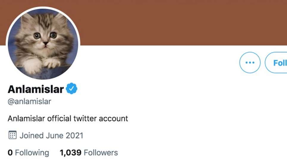 توییتر اشتباهی به ۶ حساب جعلی از جمله یک گربه تیک آبی داده بود