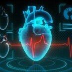 سنجش چربی اطراف قلب با هوش مصنوعی، خطر ابتلا به برخی بیماریها را تعیین میکند