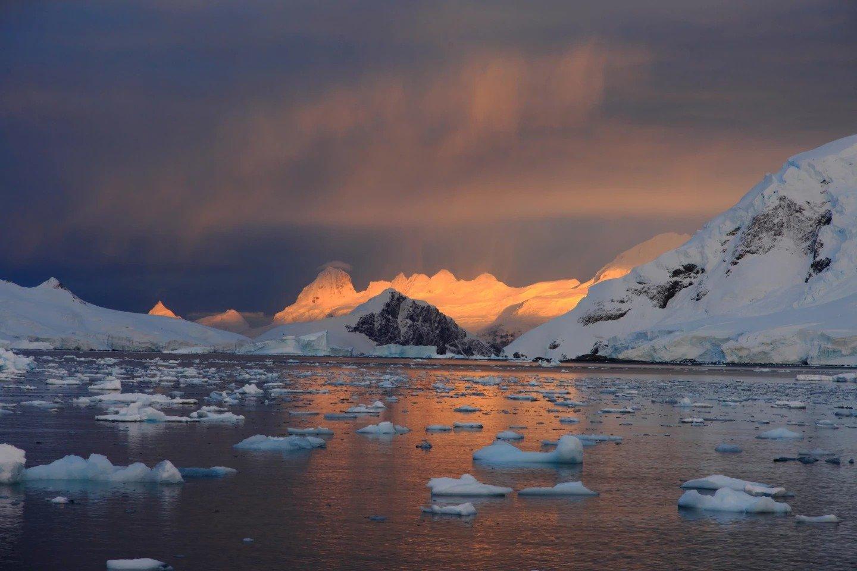 سازمان جهانی هواشناسی ثبت بالاترین دمای تاریخ قاره جنوبگان را تایید کرد