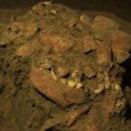 دیانای سالم زنی ۷۲۰۰ ساله از ناشناختههای مهاجرت انسانهای اوليه پرده برمیدارد
