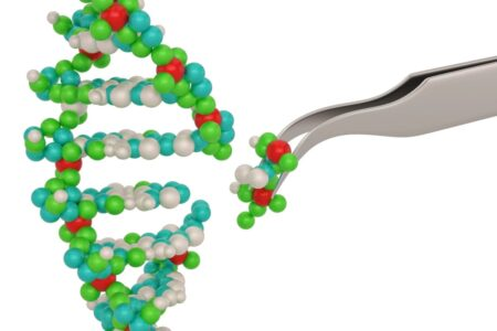 توسعه ابزار جدید کریسپر که از پروتئین کوچکتری برای اصلاح ژن استفاده میکند