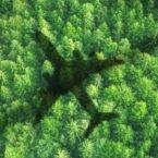 پژوهشگران از کاهش چشمگیر آلایندگی هواپیماها با استفاده از سوخت گیاهی خبر میدهند