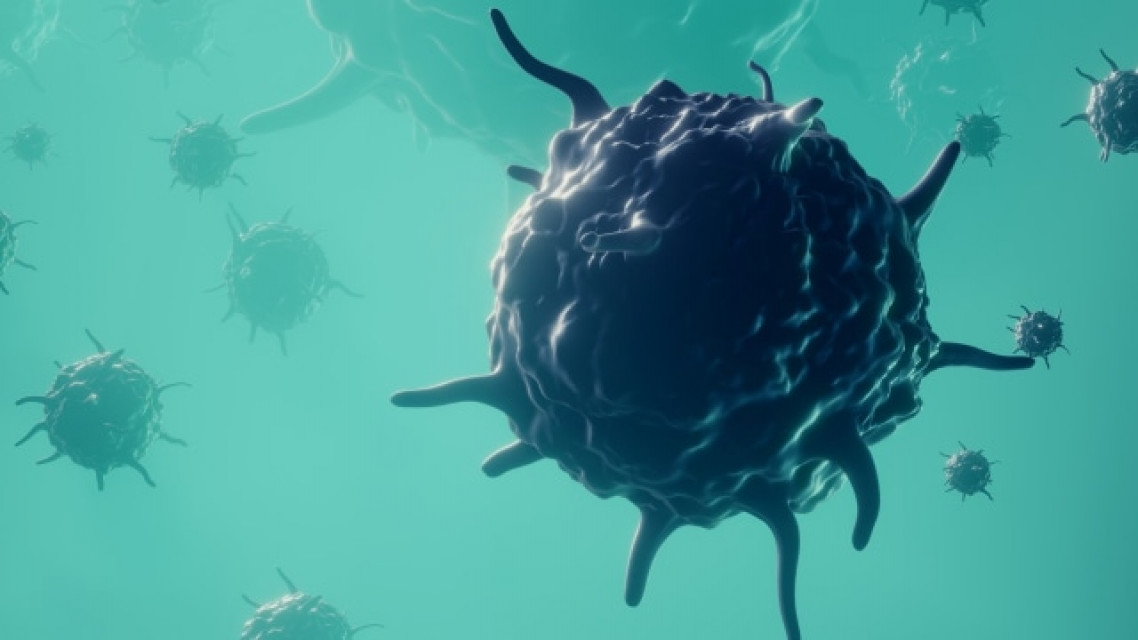 ویروس عفونی جدید «یزو» در ژاپن شناسایی شد؛ تب، کاهش پلاکت و گلبولهای سفید