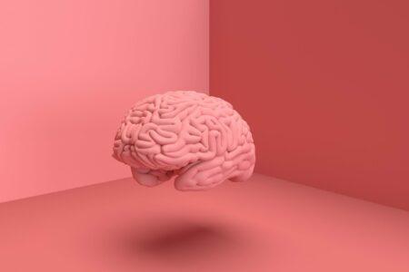عجایب مغز: آیا میتوان سلولهای مغز را بر اساس کاربردشان طبقهبندی کرد؟