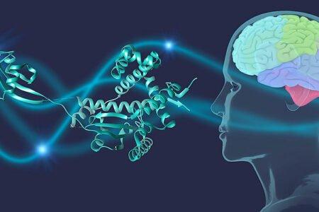 پژوهشگران روشی جدید برای کاهش علائم پارکینسون با تحریک عمقی مغز پیدا کردند