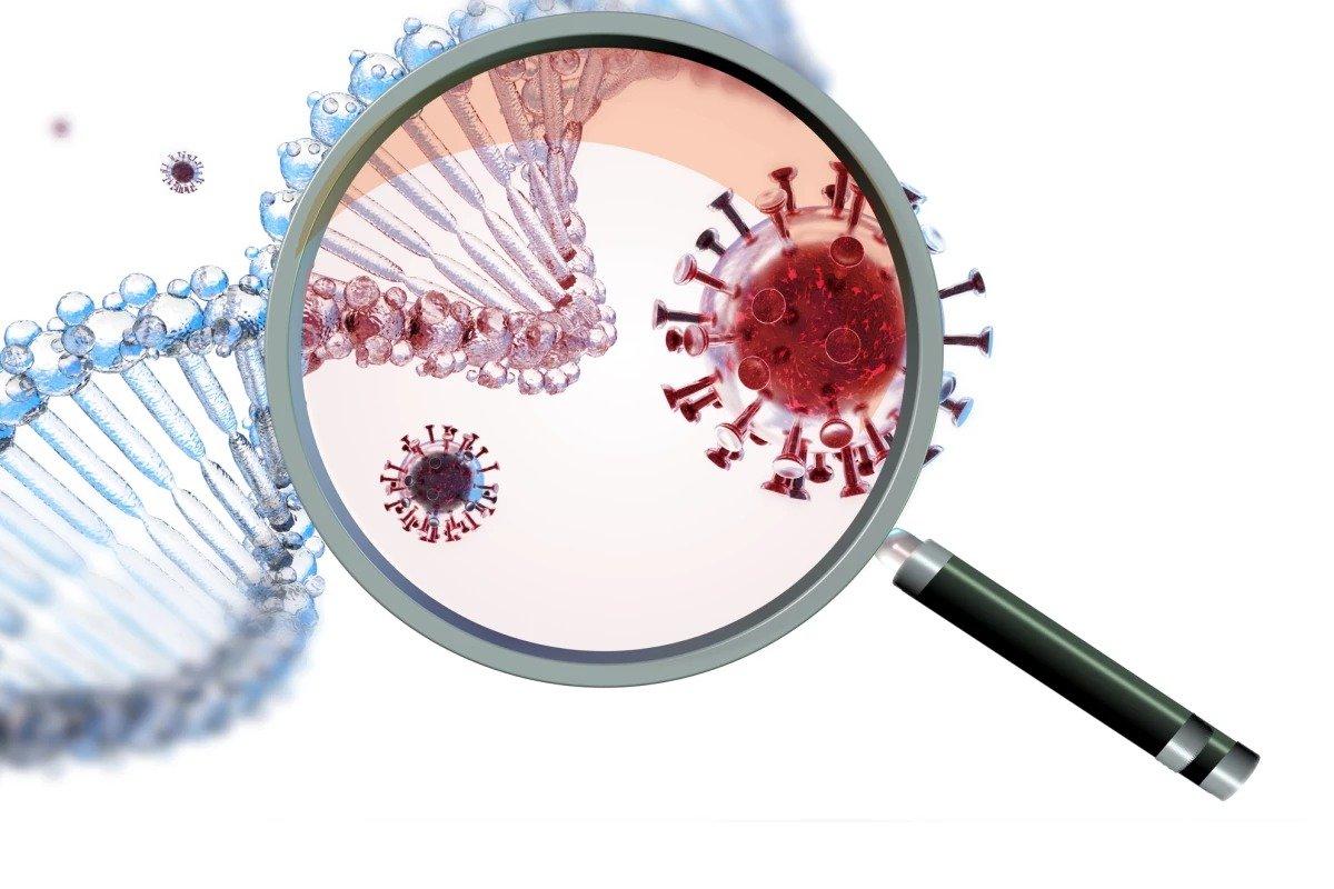 محققان از تغییرات مشترک سیستم ایمنی در بیماری کرونا و آلزایمر خبر میدهند