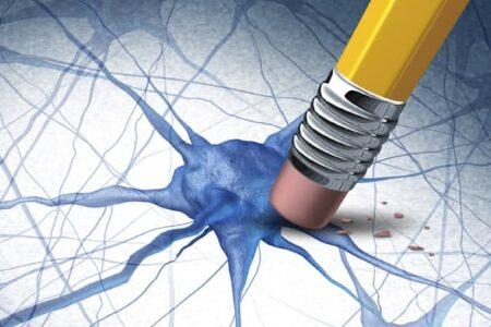 دانشمندان یک قدم به راهکار احتمالی برای حذف خاطرات بد نزدیک میشوند